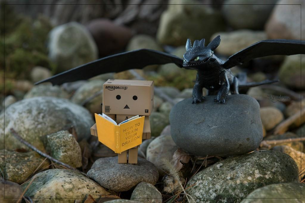A Dragon to Train by lyndemc