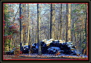 18th Jan 2015 - Snow on the woodpile