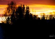 18th Jan 2015 - Sunset