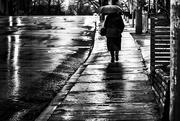 20th Jan 2015 - rain at daybreak