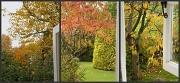 30th Oct 2010 - Leafy Views.