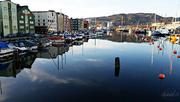 22nd Jan 2015 - Trondheim