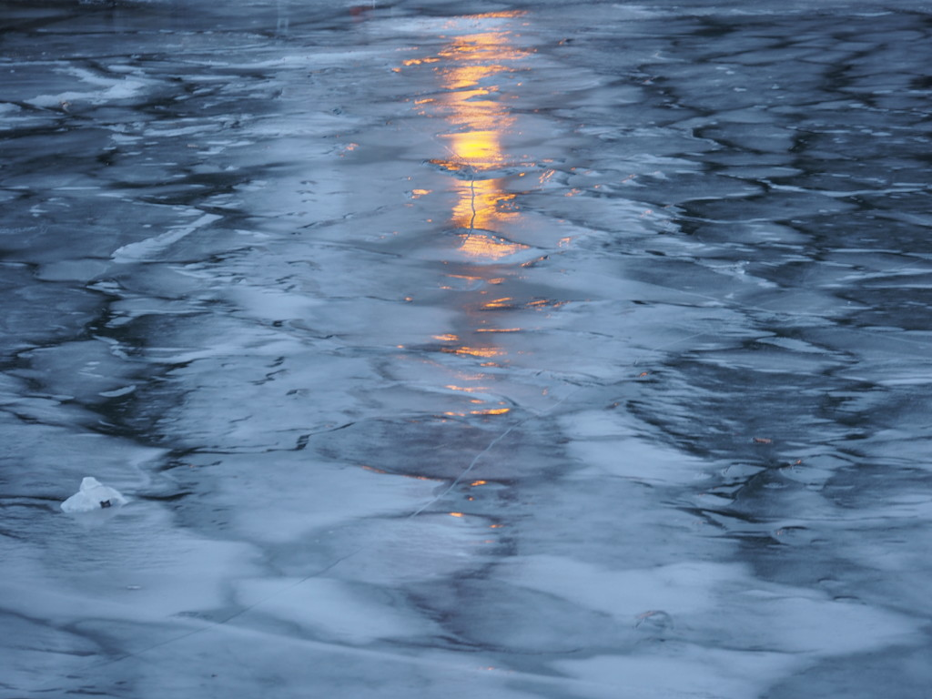 Ice Patterns by selkie