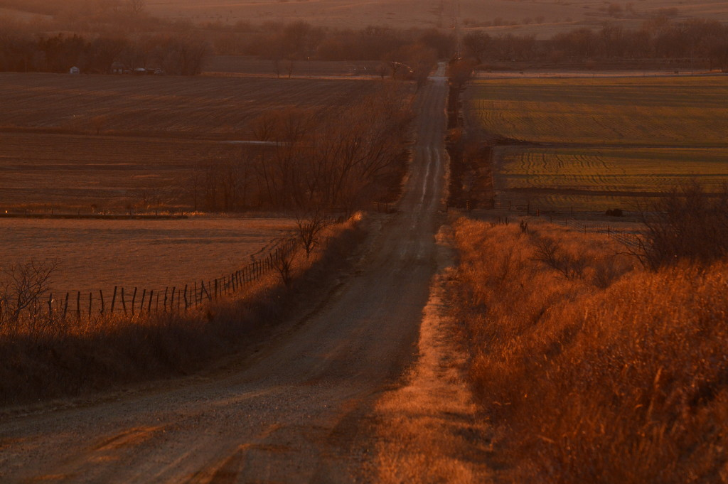 Golden Road (SOOC) by kareenking