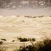 Sepia Sanddunes Sunrise