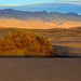 Golden Sunrise in the Dunes