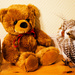 Danbo, Teddy and Owl