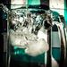 (Day 342) - Ice Splash by cjphoto