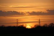 27th Jan 2015 - Skulking into the sunset