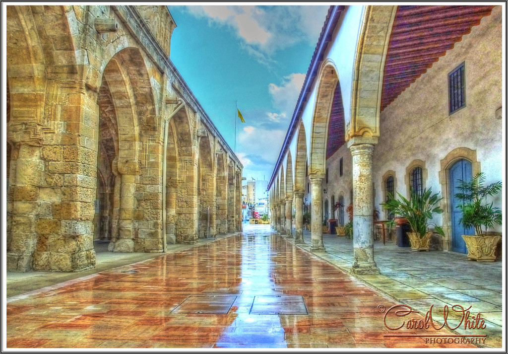 Between The Arches by carolmw