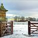 Snowy Scene near Great Brington,Northampton