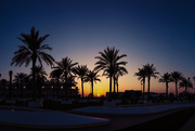 16th Jan 2015 - Day 016, Year 3 - Arabian Abu Sunset
