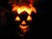 31st Oct 2010 - Halloween Pumpkin .