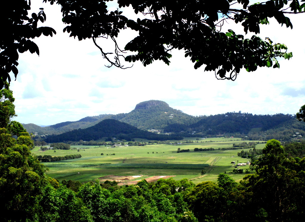 Visited a farm at Bli Bli.  This was the view from the verandah by 777margo
