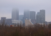2nd Feb 2015 - A foggy day in Rotherhithe
