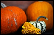 31st Oct 2010 - Happy Halloween!
