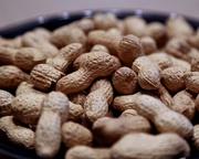 2nd Feb 2015 - Nuts