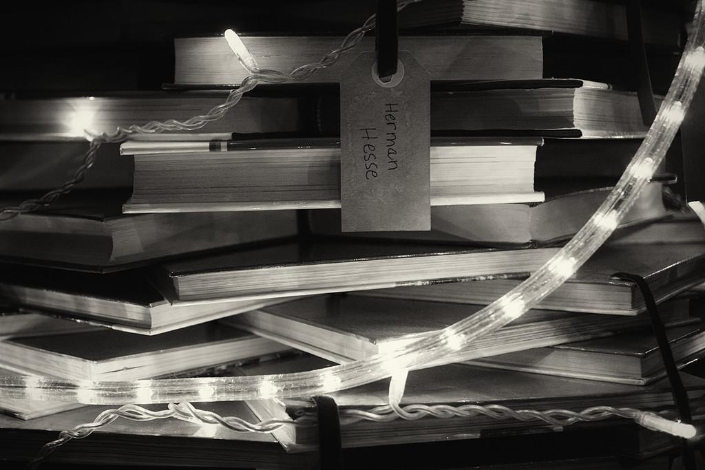 Books by jborrases