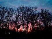 3rd Feb 2015 - Sunrise
