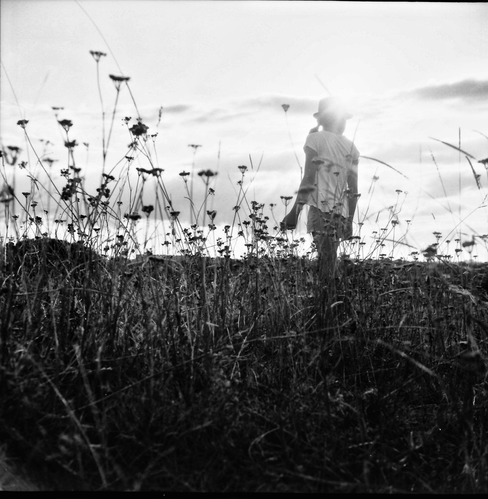 Through the field by spanner