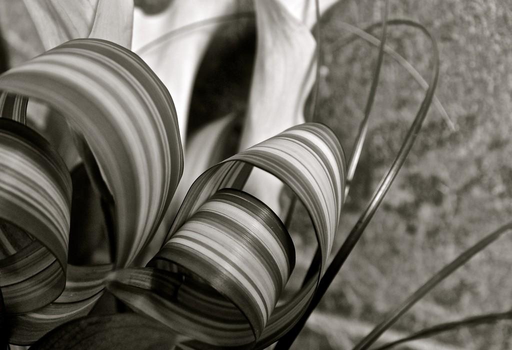 Stripe by brigette