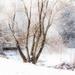 Wonderful Winter by kph129