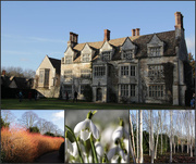 8th Feb 2015 - Anglesey Abbey