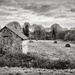 B&W February: Disused Barn, Abandoned Hay Bales by vignouse