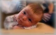1st Nov 2010 - ~ Harper at Six Weeks ~