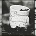 Coffee Lover by gailmmeek