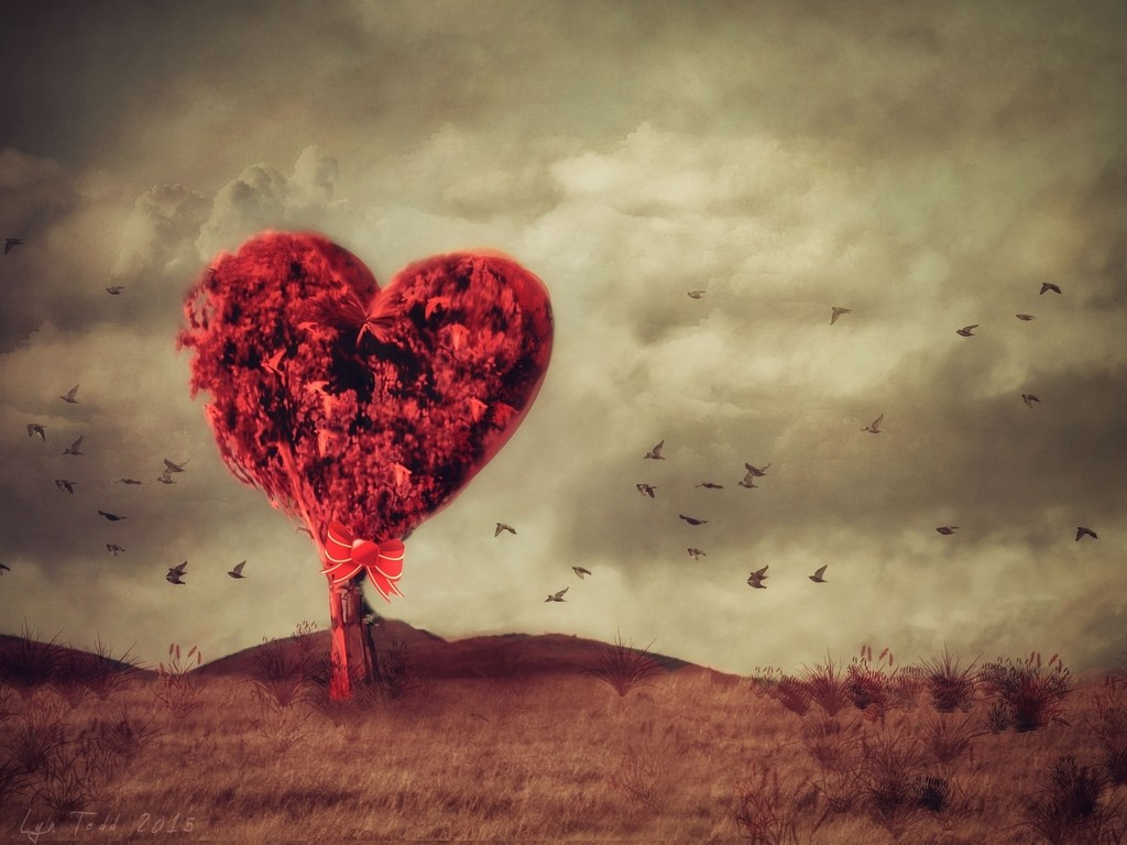 365 seasons of love by ltodd