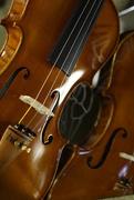 14th Feb 2015 - Violin reflection