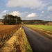 Leckhampton Hill by pistache