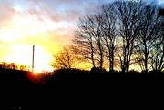 19th Feb 2015 - Sunset