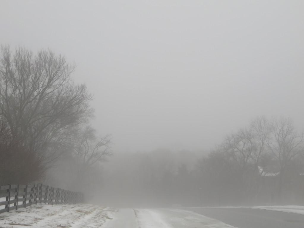 Saturday, February 21, 2015 by ryanjasonphotography