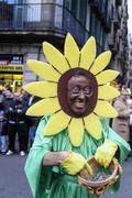 21st Feb 2015 - Sunflower man