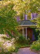 2nd Nov 2010 - Purple House