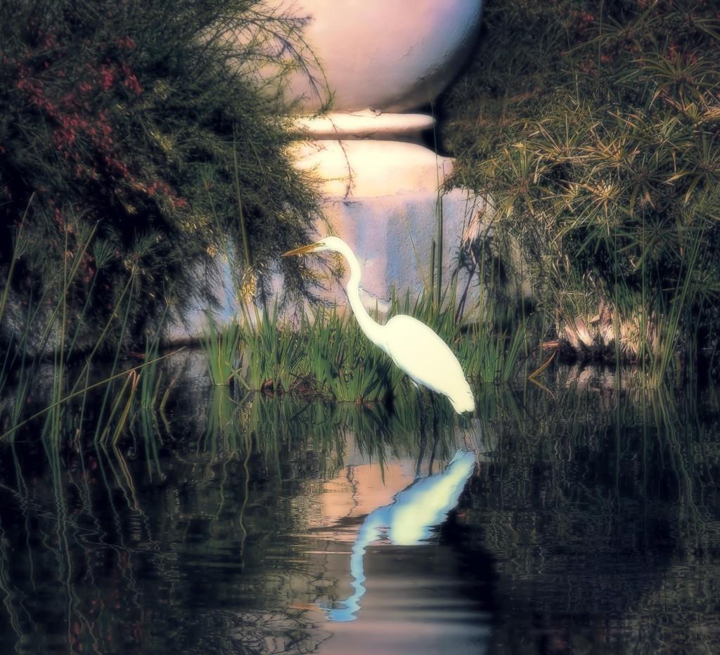 The Dream by joysfocus