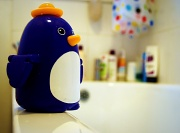 2nd Nov 2010 - Mr Penguin