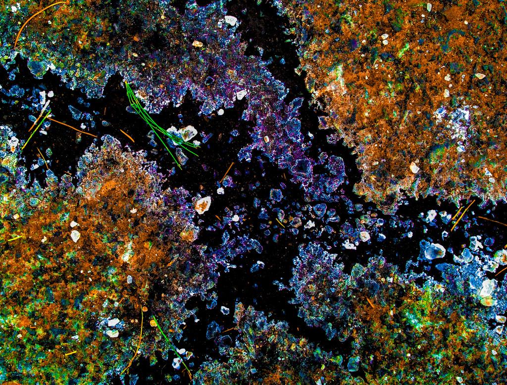 Cosmic salt by loweygrace