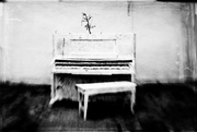 28th Feb 2015 - piano as an art piece