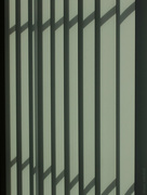 30th Jan 2015 - Vertical blinds in the morning