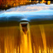 Gold, liquified.  by vera365
