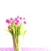 Pink tulips by cocobella