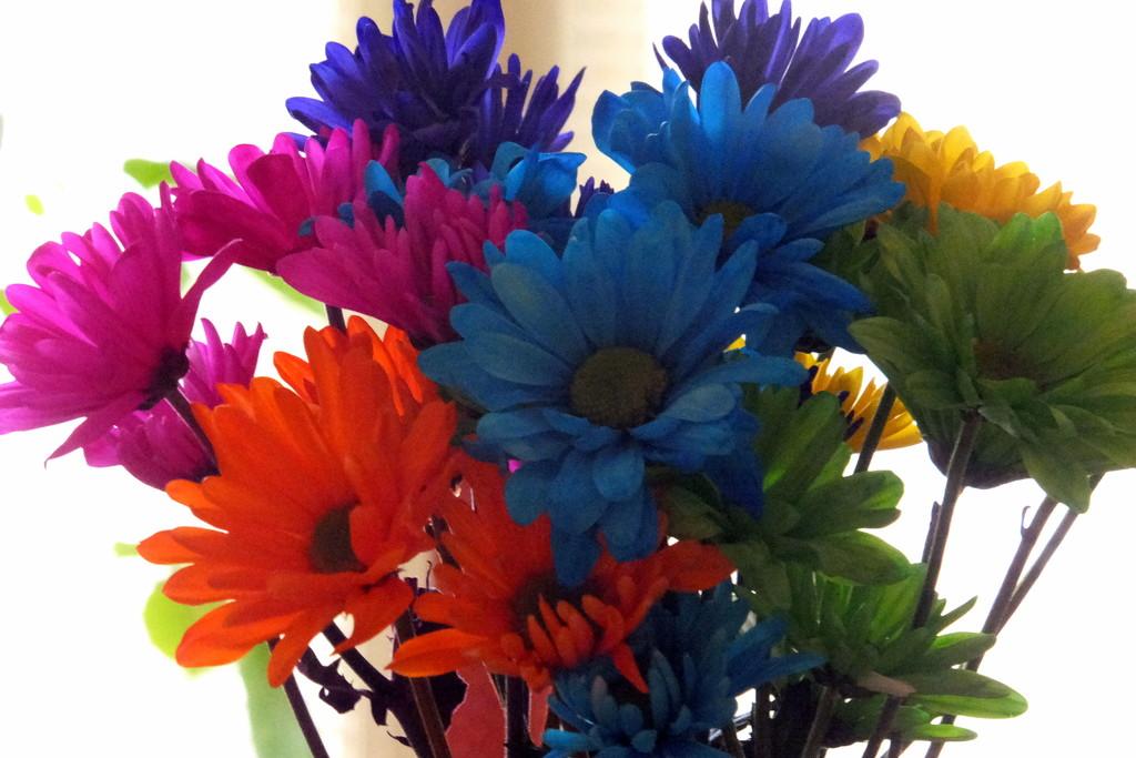 Multicolor March by linnypinny