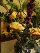 25th Feb 2015 - When Flowers Go Bad