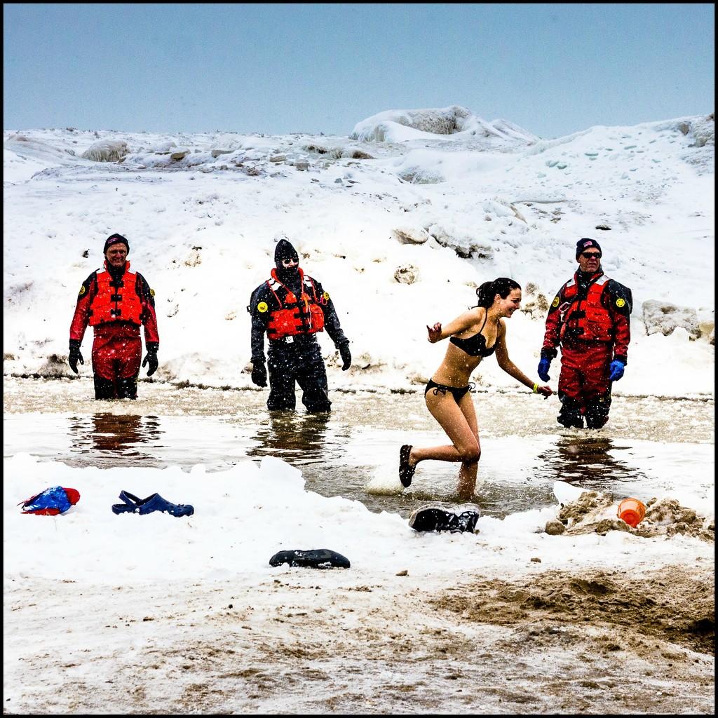 Polar Plunge #1 by ukandie1