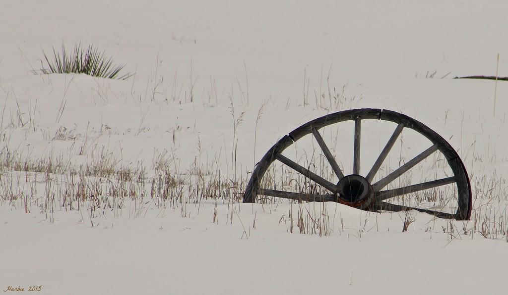 Buried Wagon Wheel by harbie