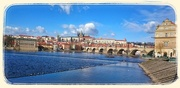 3rd Mar 2015 - The Charles Bridge and River Vltava