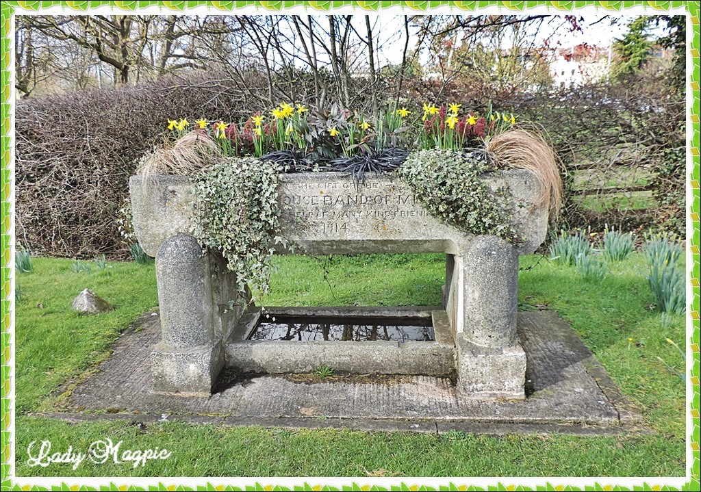 A large Trough. by ladymagpie